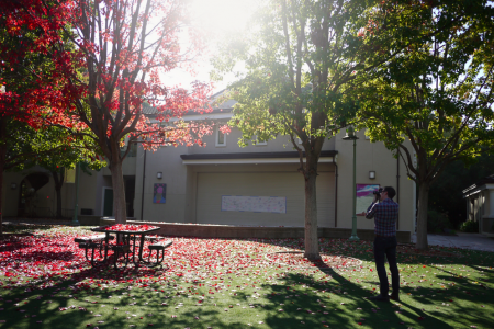 It seems unfair that Menlo gets year-round good weather AND also autumn.